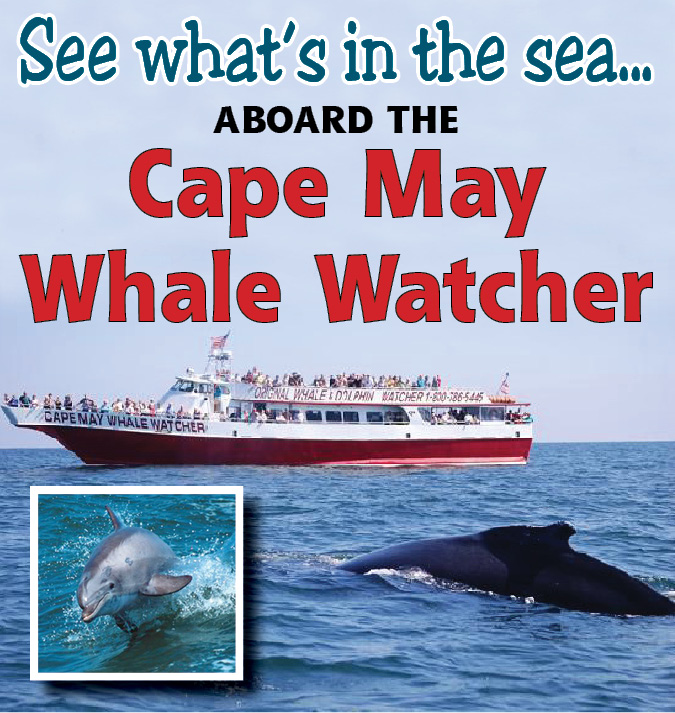 Cape May Resort -  Cape May Whale and Dolphin Watcher