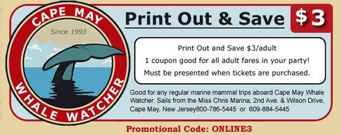 coupon-cape-may-whale-watcher